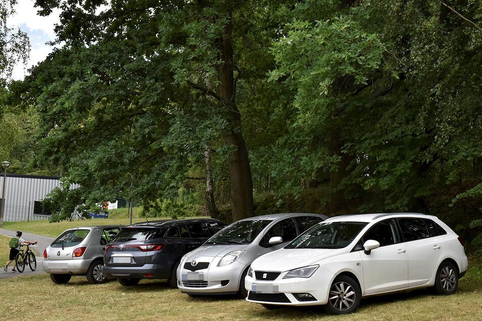 Die ersten vier Falschparker des Tages: Sie haben noch einen schattigen Platz bekommen. Das ändert nichts daran, dass Parken hier verboten ist.
