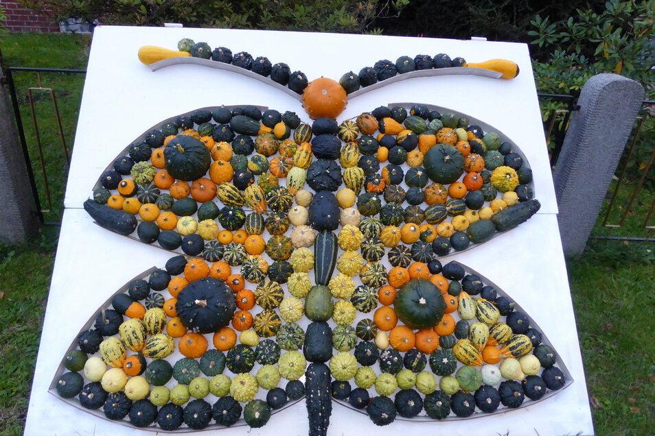 Viele Kürbisse in etlichen Sorten hat wohl dieser Gartenfreund gezüchtet, damit er den Schmetterling gestalten kann.