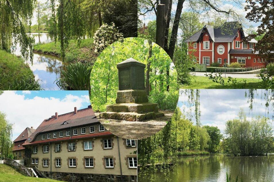Park-Schönheiten im Mai: In Zittaus grüner Lunge im Westen der Stadt hat der Frühling Einzug gehalten (von links oben im Uhrzeigersinn): der Burgteich, die Burgteich-Gaststätte, der Pethauer Teich und das Haus am Standort der ehemaligen Burgmühle. In der