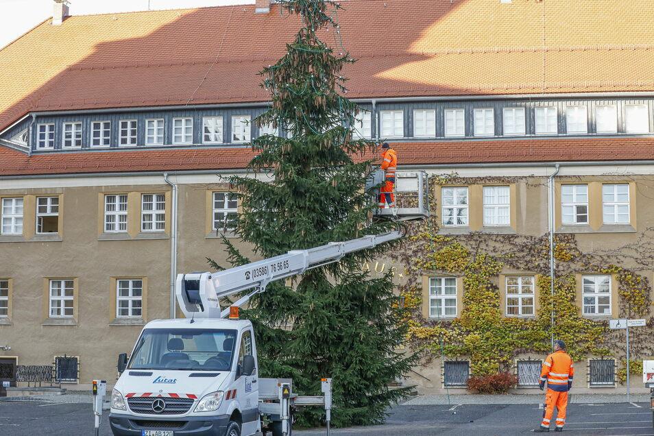 Und so sieht der diesjährige Weihnachtsbaum auf dem Rathausplatz in Seifhennersdorf aus.