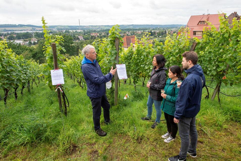 Im Weinberg der Radebeuler Winzer Bernd Kastler (links) und Enrico Friedland konnten die Besucher ihre Kenntnisse bei einem Weinberg-Quiz testen.