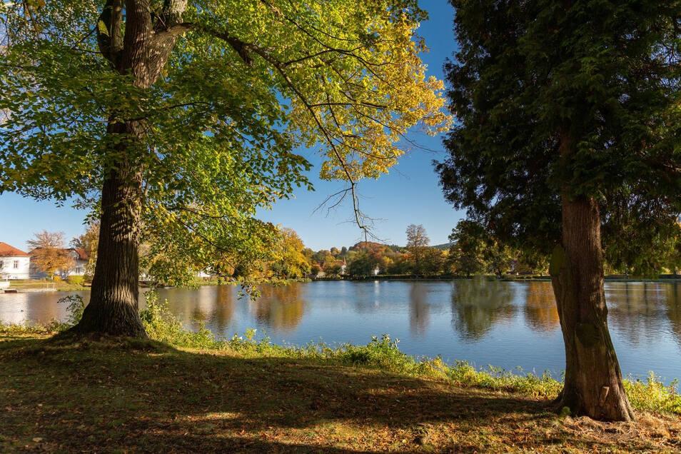 In unmittelbarer Nähe befindet sich der Hammerteich, welcher nicht nur im Sommer einen tollen Anblick garantiert.