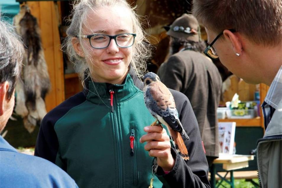 Vorführungen mit Greifvögeln auf der Löbauer Wiese.