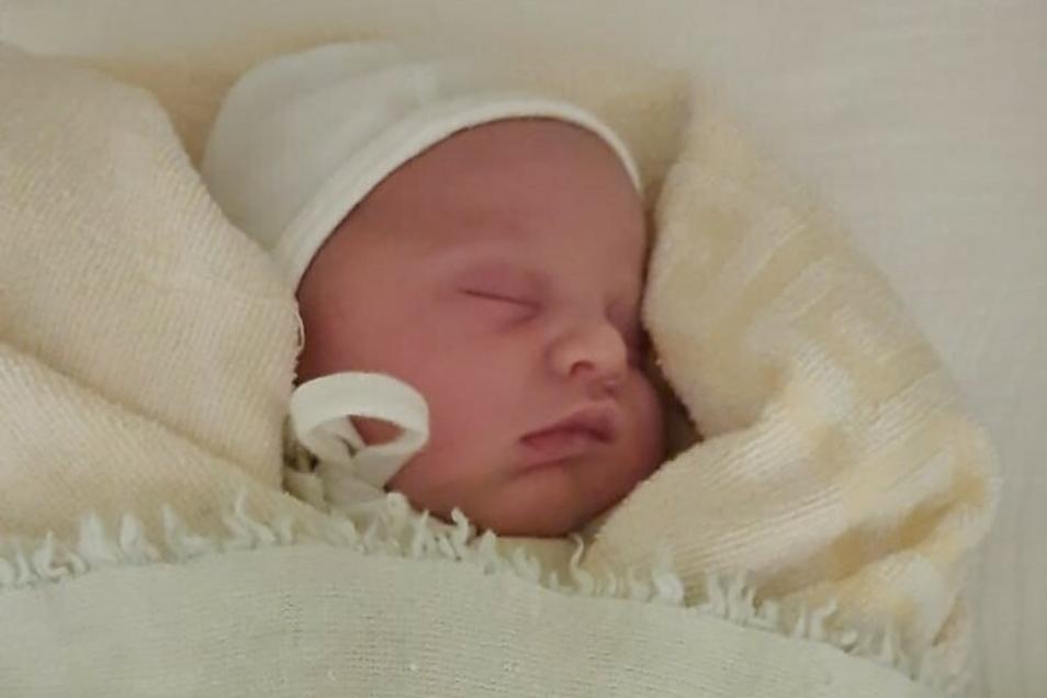 Der kleine Maxim kam am 2. Januar in Zittau zur Welt.