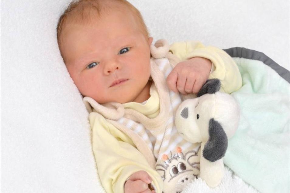 Frieda  Geboren am: 25. Oktober Geburtsort: Ebersbach-Neugersdorf Gewicht : 3310 g Größe 50 cm Eltern: Nicole und Martin Wohnort: /