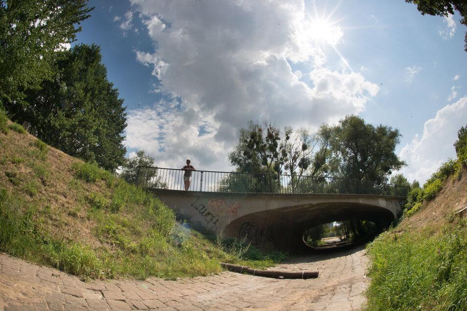 In der Prießnitz sind viele Abschnitte ausgetrocknet, nur an einigen Stellen sind Pfützen verblieben.