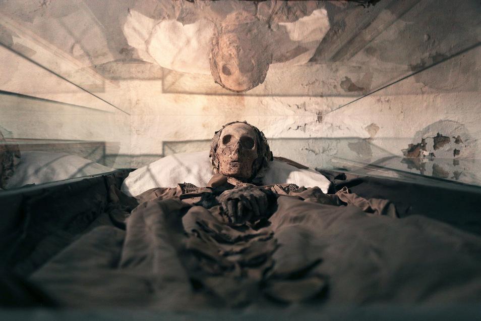 Die Mumien in der Gruft unter der Klosterkirche in Riesa wurden 2016 bis 2018 wissenschaftlich untersucht. Bald soll ihnen eine Sonderschau gewidmet werden.