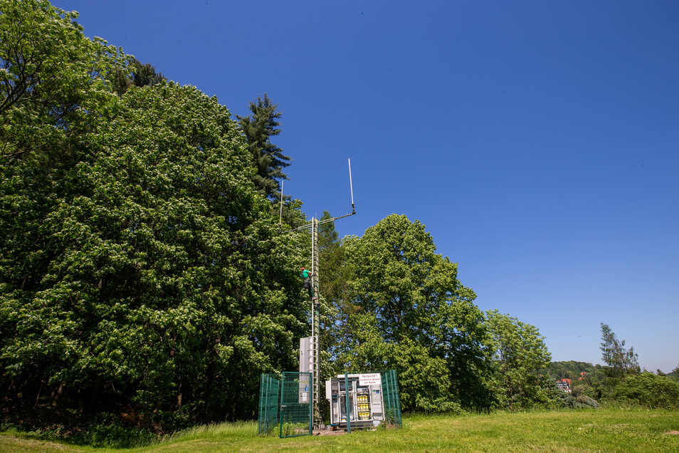 So ähnlich könnte der Mast in Lauterbach einmal aussehen.