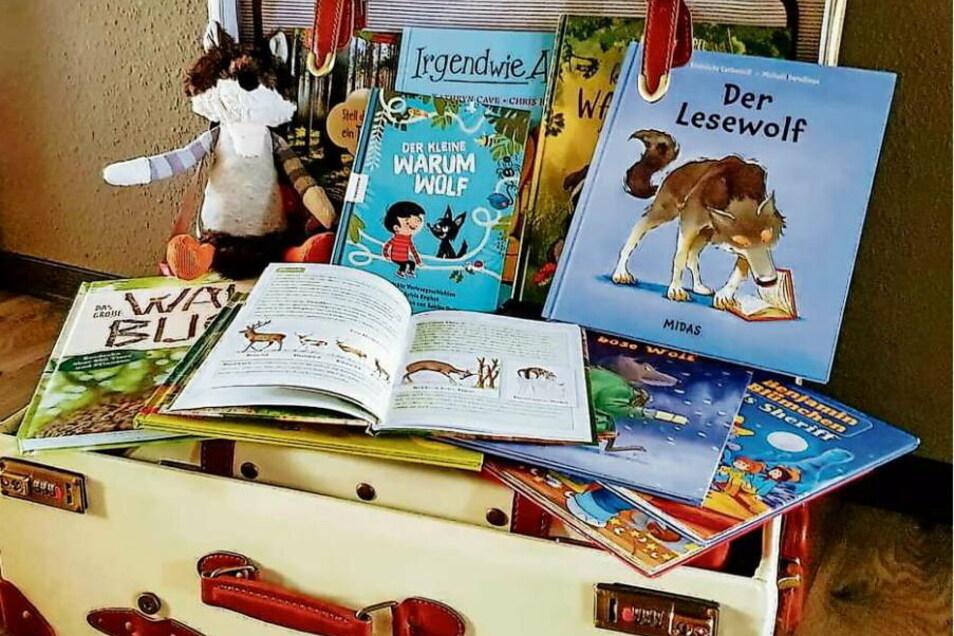Mit einem mobilen Bücherkoffer ist Karsten Herden in Kitas und Grundschulen unterwegs. Er möchte die Kinder fürs Lesen begeistern und ihre Neugier wecken. Wegen Corona mussten viele Termine aber leider ausfallen.