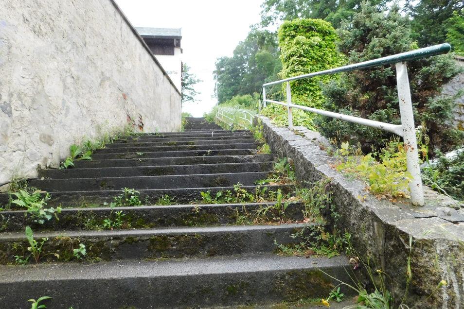 Diese Treppenanlage in Bad Muskau soll erneuert werden. In einer früheren Version wurde an dieser Stelle leider die Treppe zur roten Brücke. Wir bitten, den Fehler zu entschuldigen.