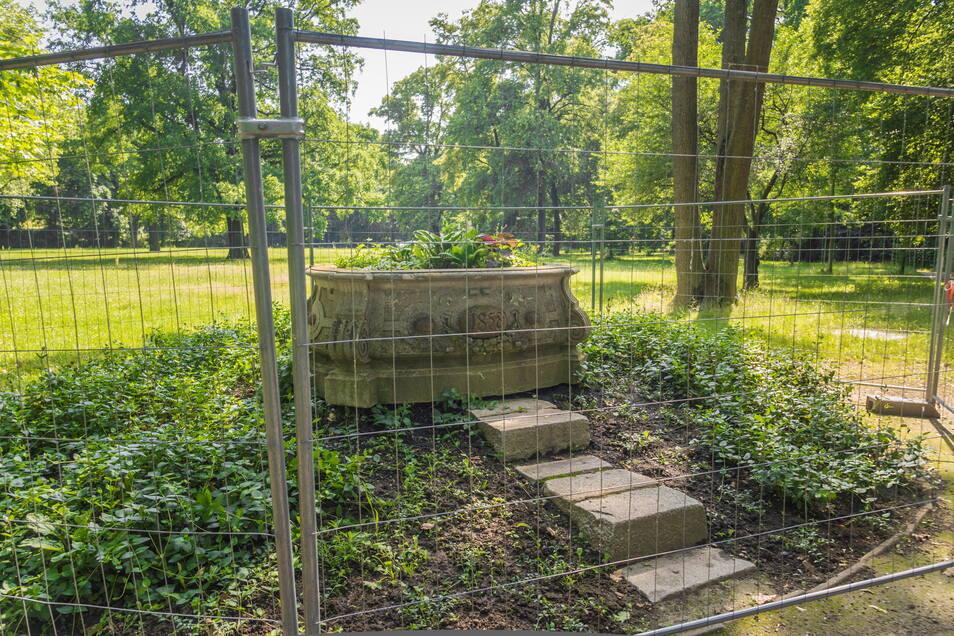 Der Wassertrog ziert seit Jahrzehnten den Riesaer Stadtpark. Zuletzt ist das Sandstein-Gefäß von einem Bauzaun umringt gewesen.