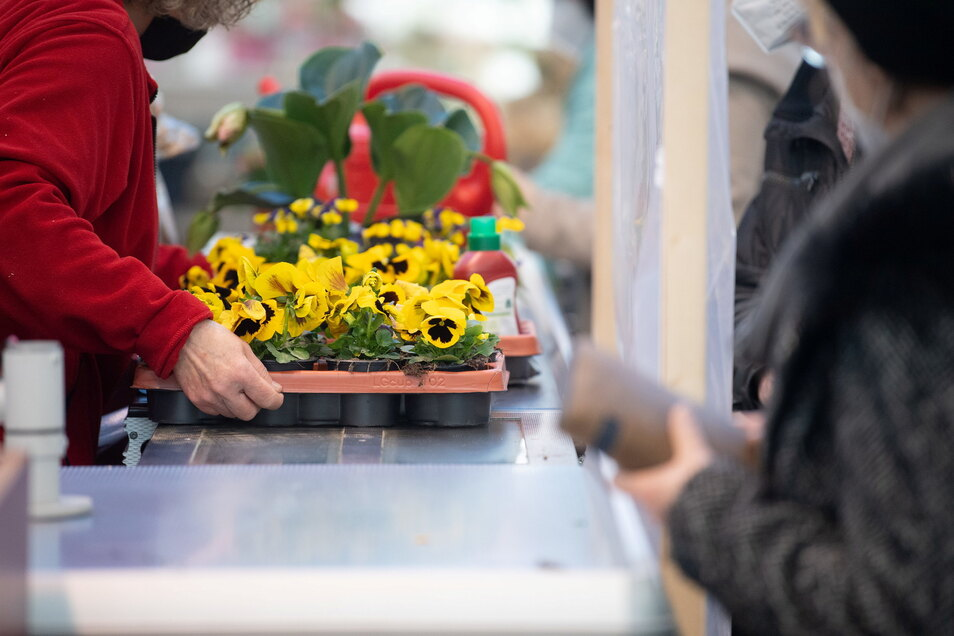 Ab Montag dürfen Gartenmärkte in Sachsen wieder öffnen.