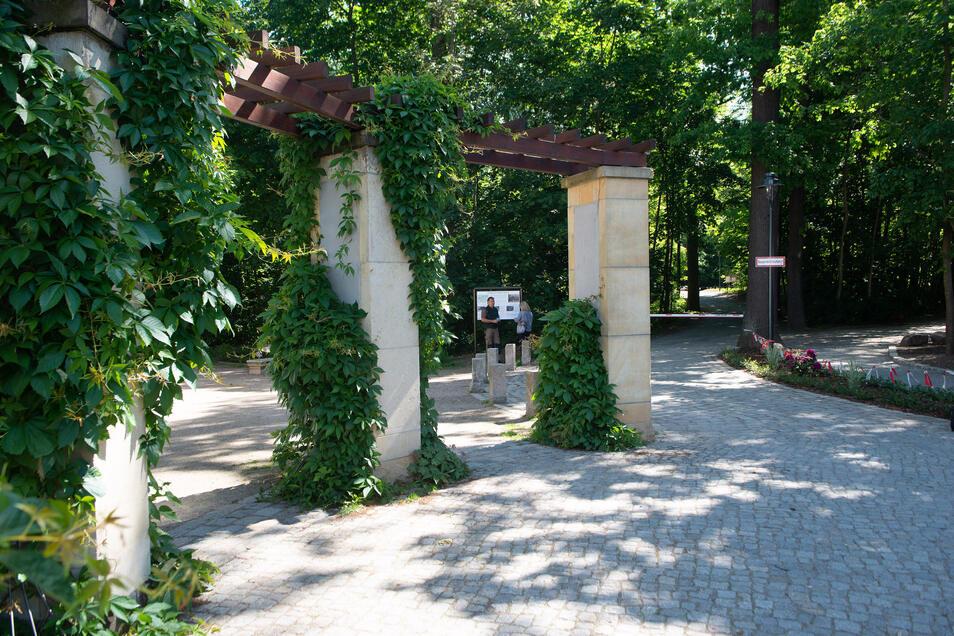 Rechts neben der Pergola ist der neue Fußweg mit dem Beet zu sehen. So werden die Spaziergänger am Eingang zum Waldpark empfangen.