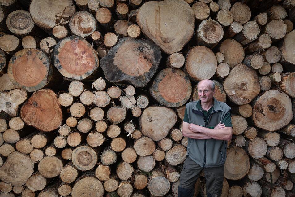 Ein Bild, das Forstdirektor Heiko Müller nicht gefällt: Viel zu viel Holz muss derzeit schnell raus dem Wald, weil es vom Borkenkäfer befallen ist.