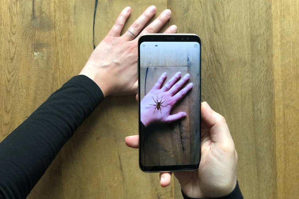 Eine App zeigt eine virtuelle Spinne auf einer Hand.