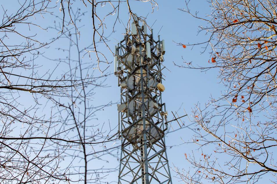 Symbolbild: Mobilfunkmast im Wald bei Cotta in Sachsen.