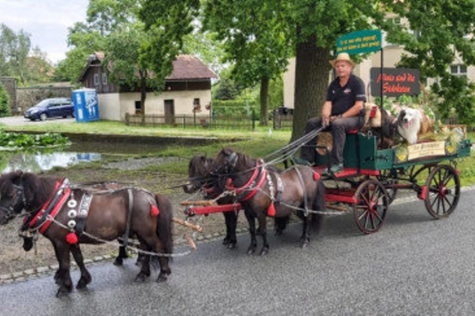 Mit einem Ponygespann fuhr Winfried Matutat am Sonntag durch Walddorf und Eibau. Eigentlich sollten noch mehr Teilnehmer dabei sein, auch ein Bierwagen.