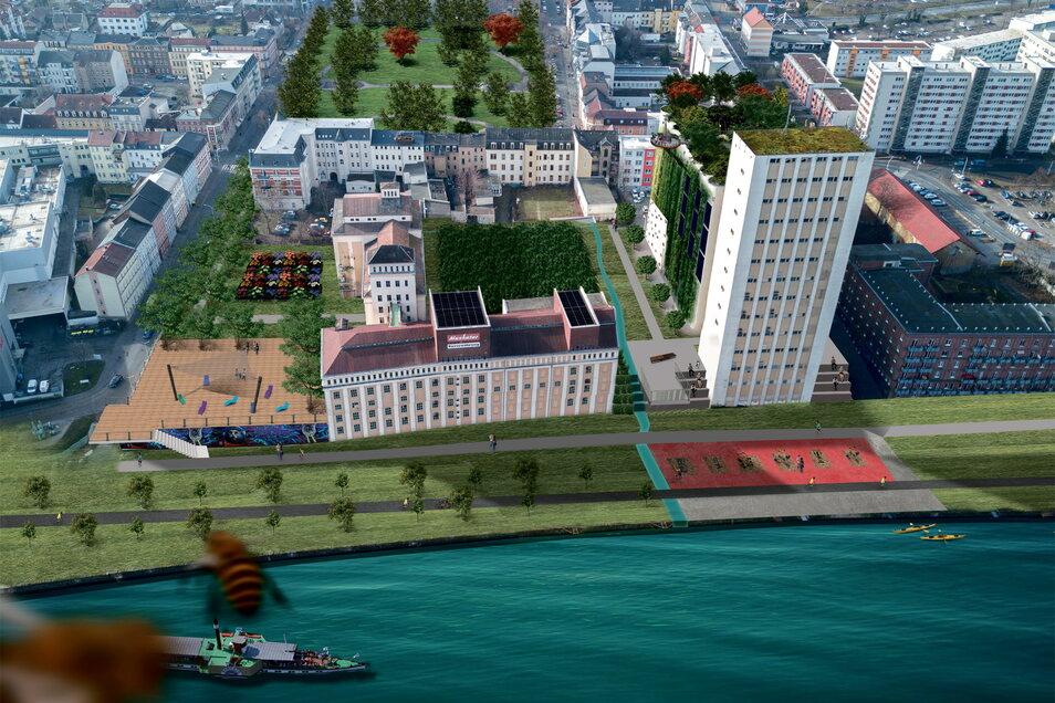 So stellt sich die Riesaer Stadtverwaltung das umgestaltete Muskator-Gelände an der Elbe vor - mit viel Grün, einem durchgehenden Elberadweg und einer Bootsanlegestelle. Hinten ist der Puschkinplatz zu erkennen.
