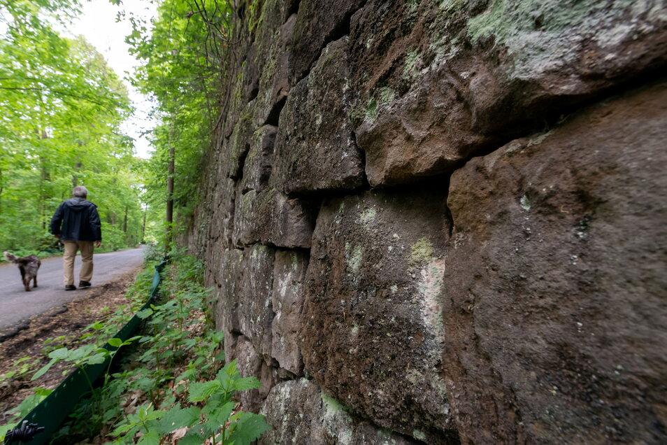 Wer dem Salamander Unterschlupf bieten will, der baut ihm Trockenmauern mit vielen Ritzen, so wie diese bei Obervogelgesang.