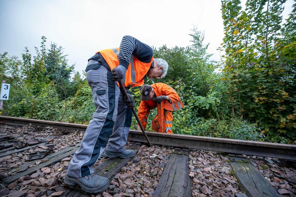 Kai Baumgarten (rechts) und Jochen Franke arbeiten mit einfachen Geräten, um die Schienen anzuheben.