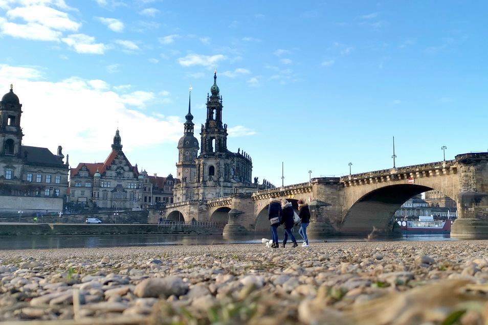 Das Frühjahr war auch in Dresden viel zu trocken. Das hat Einfluss auf das ganze Jahr.