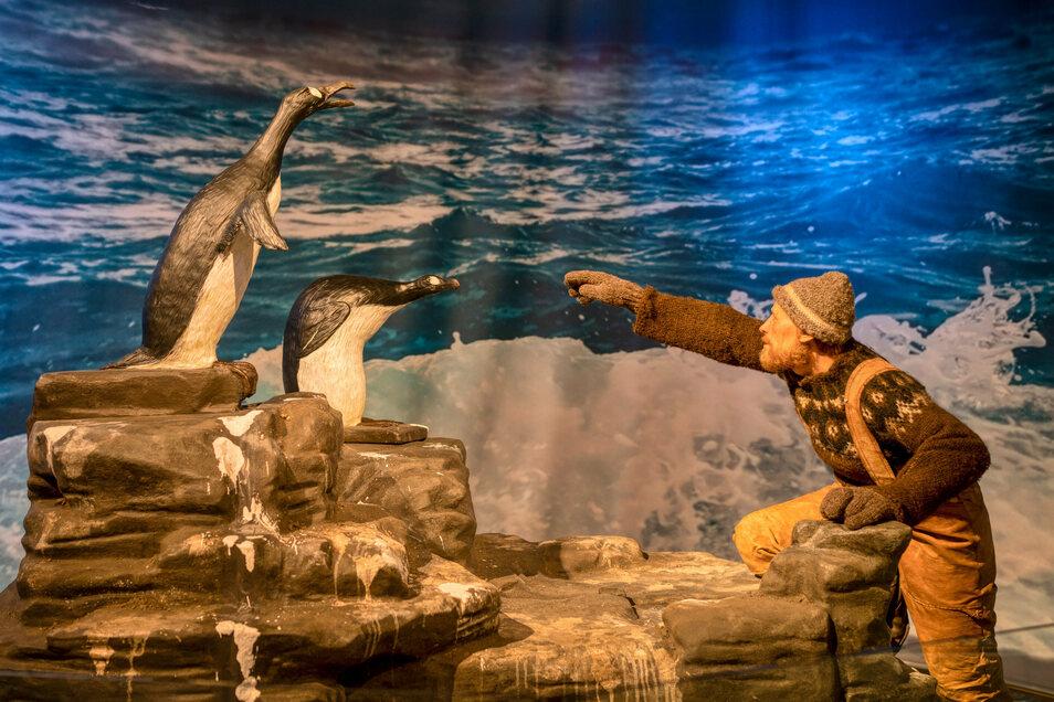 Ein isländischer Fischer greift nach zwei Riesenalken. Sie lebten anders als die Pinguine auf der Nordhalbkugel. 1844 wurden die letzten Exemplare getötet.