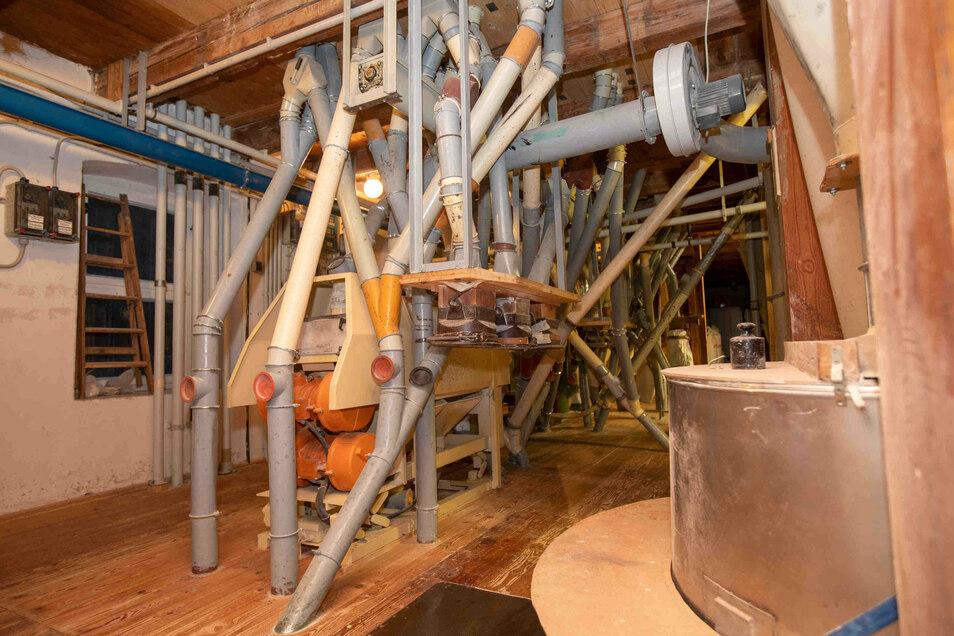 Einer der drei Böden ist der Rohrboden. Mit Hilfe der Rohre wird das Korn immer wieder zwischen den Böden transportiert.