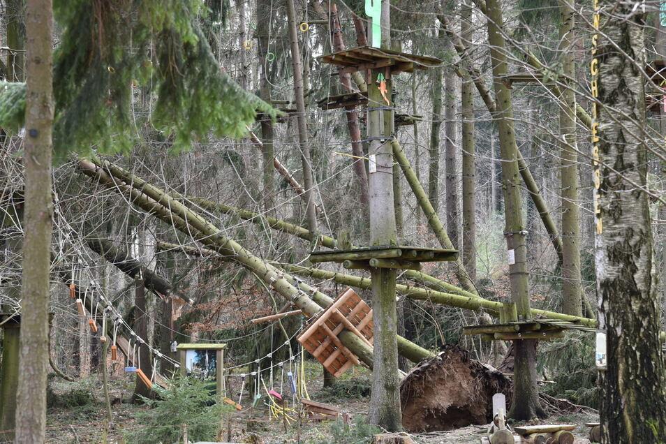 So sah es 2019 nach dem Sturm im Waldseilpark in Paulsdorf an der Talsperre Malter aus. Die Sturmschäden sind beseitigt, aber es haben sich noch andere Probleme gezeigt.