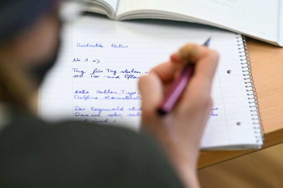 Die Wahl der richtigen Schule ist dieses Jahr besonders schwer. Was zeichnet Dresdens Oberschulen aus?
