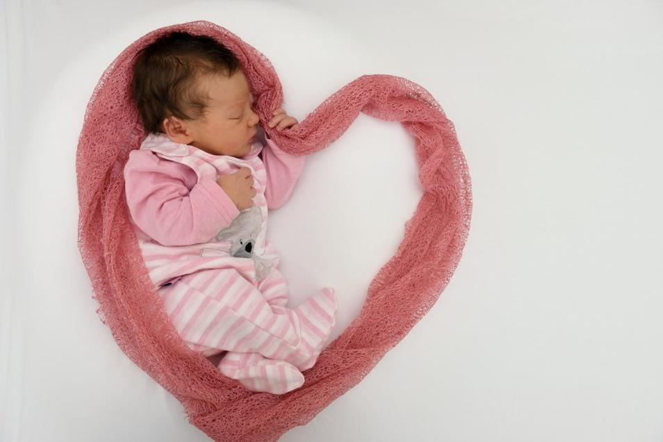 Emilia, geboren am 26. Juli, Geburtsort: Pirna, Gewicht: 3.760 Gramm, Größe: 52 Zentimeter, Eltern: Linda und Magnus, Wohnort: Dresden