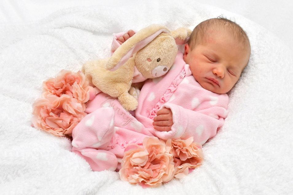 Amelie, geboren am 14. Januar, Geburtsort: Freital, Gewicht: 3.030 Gramm, Größe: 50 Zentimeter, Eltern: Nicole Schulze mit Amy, Wohnort: Freital