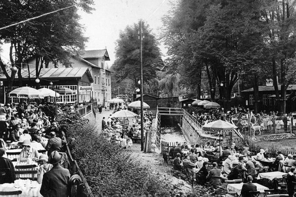 Kaum ein Platz frei. Die Heidemühle gehörte um 1900 offenbar zu den beliebtesten Gasthöfen am Rande Dresdens. Im Hintergrund ist der eigentliche Gasthof zu sehen.