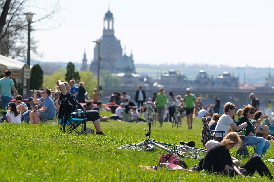 Der sommerlich warme Sonntag lockte viele Menschen ins Grüne, wie hier an den Elbwiesen in Johannstadt.