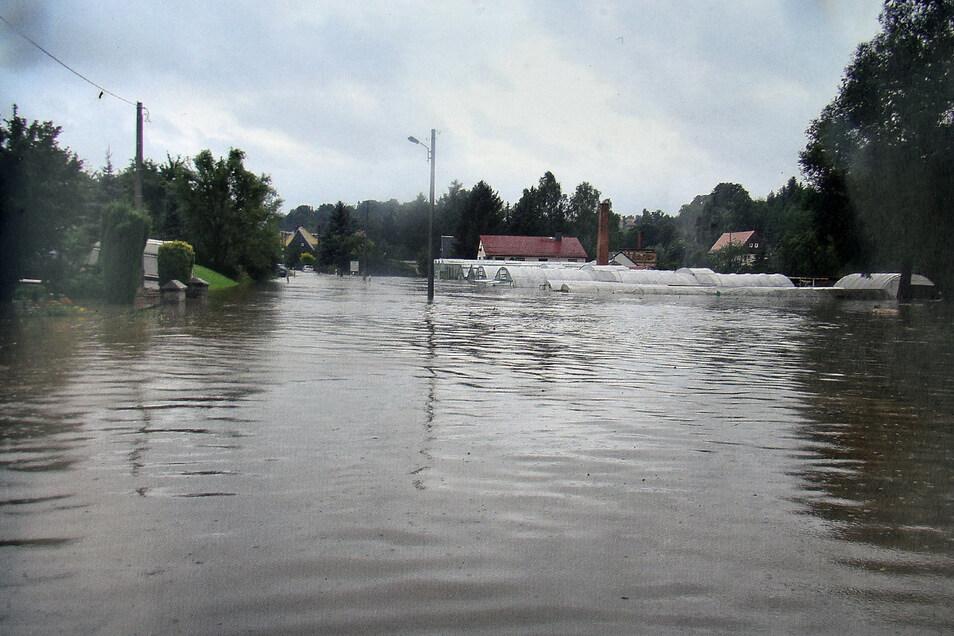 Die gesamte Gärtnerei steht unter Wasser.