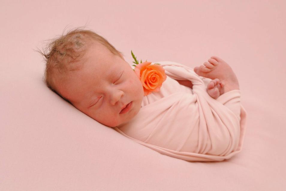 Holly, geboren am 10. Juli, Geburtsort: Meißen, Gewicht: 3.414 Gramm, Größe: 48 Zentimeter, Eltern: Jana Wagner und Christian Heymann, Wohnort: Radeburg