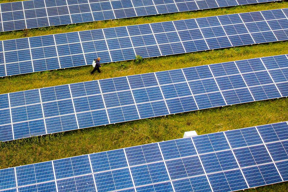 Ein Solarfeld soll in Seifhennersdorf entstehen.