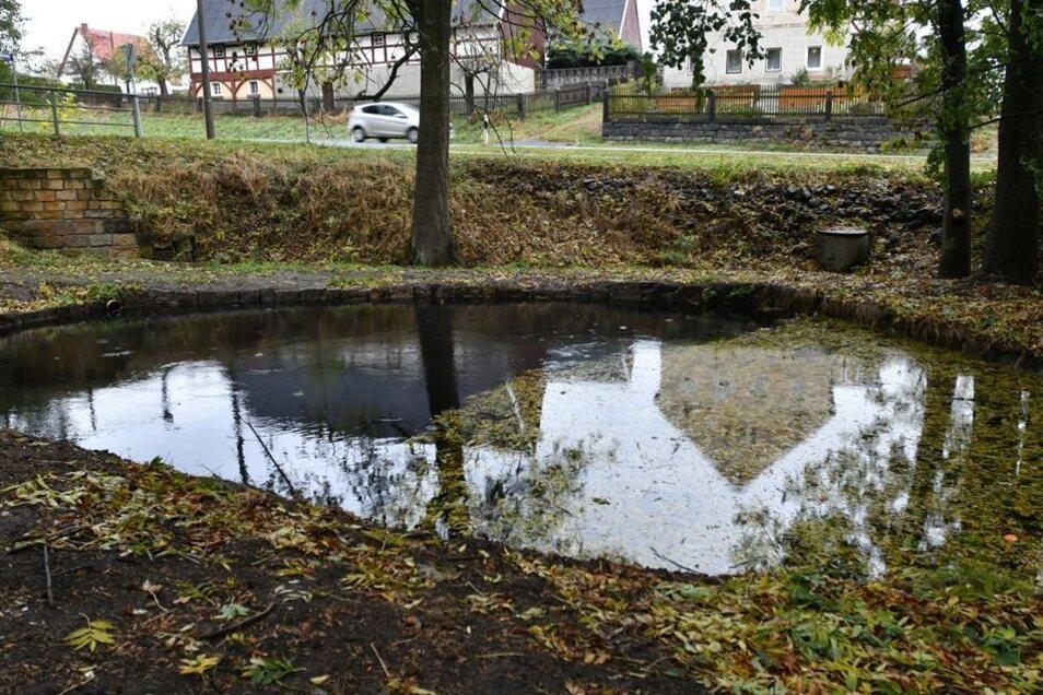 Der Teich am Mittelweg müsste dringend geschlämmt werden.
