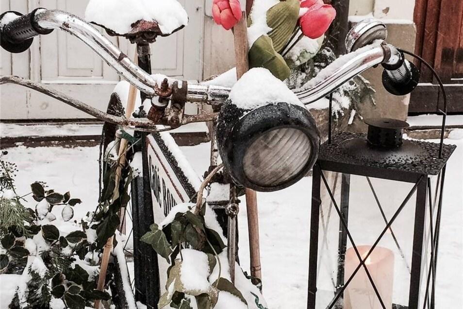 Einen Frühlingsgruß schickt der Dohmaer Bodo Radecker vom Café Bohemia in Pirna. Warmen Kaffee gibt es dort ab dem 2. Februar wieder.