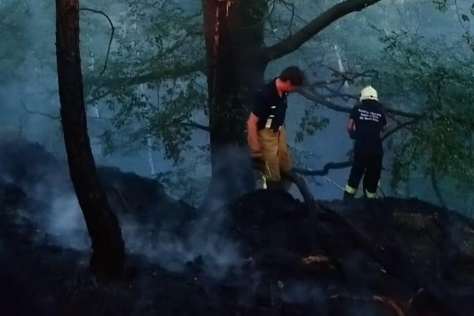 Die Kameraden beim Löschen des Brandes auf dem Ameisenberg.