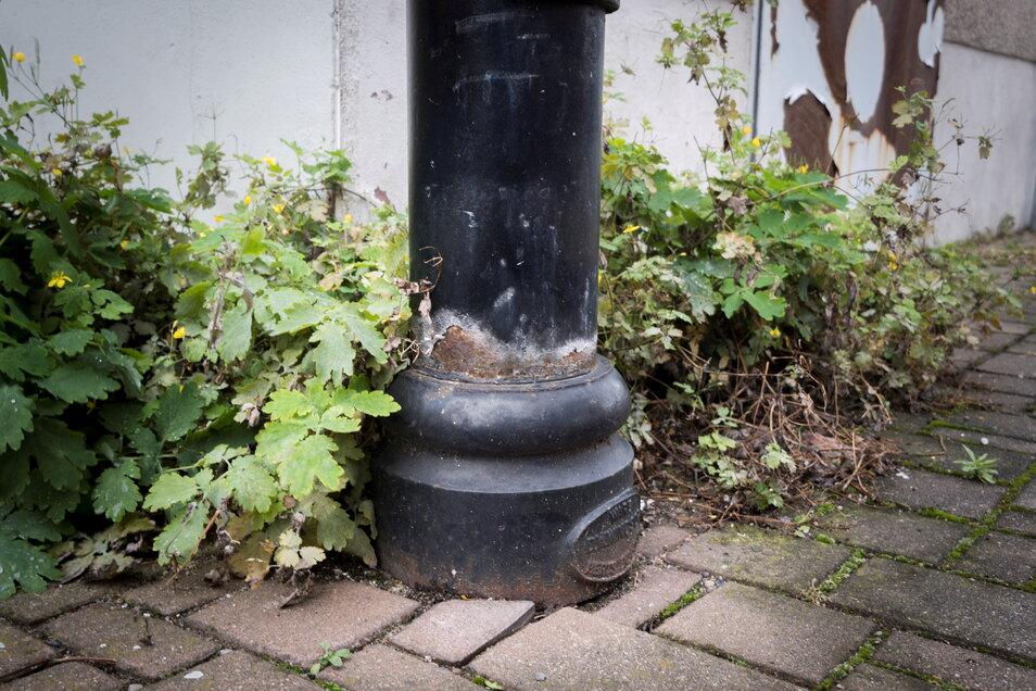 Streusalz, Feuchtigkeit, Hundekot und andere Substanzen setzen Masten zu. Bei genauerem Hinsehen kann Schadstellen erkennen – soweit sie oberirdisch liegen. Nicht immer muss das die Standsicherheit eines Mastes gefährden. Um die zu testen, war in Riesa je