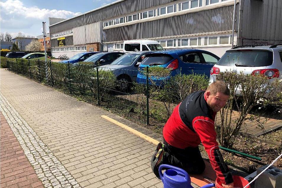 Sportwart Volker Kloth stellt den Heckenschutz an den Außenanlagen vor der VBH-Arena fertig, Jetzt sollte dem Grün nichts mehr passieren können