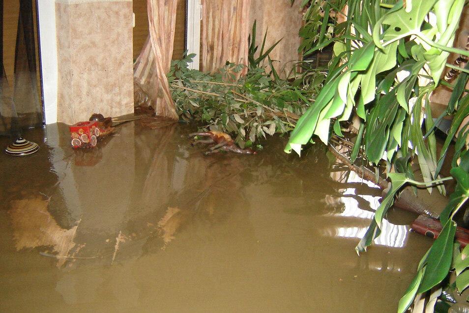 Im Wohnzimmer stand einen Tag nach der Flut noch immer das Wasser, genau so hoch wie draußen. Auch zahlreiche Zimmerpflanzen gingen nach der Flut ein.