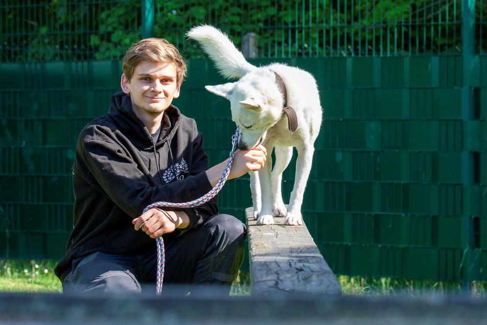 Leon Geburek macht eine Ausbildung zum Tierpfleger im Tierheim Pirna. An seiner Seite ist Hund Timmy.