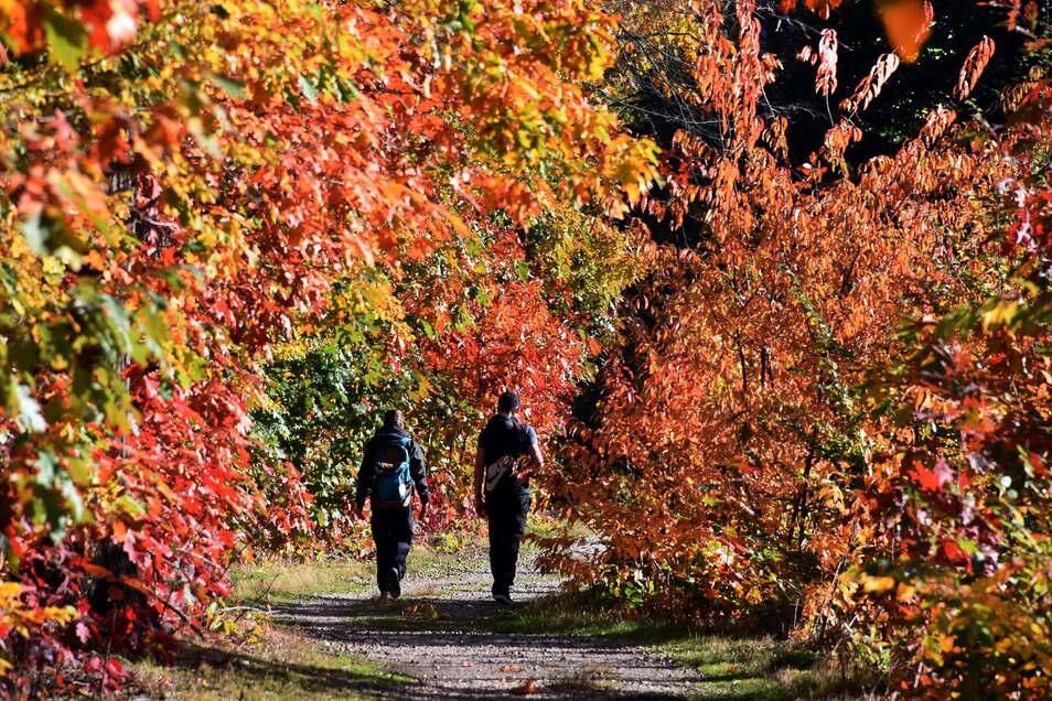 Die Sachsen können sich über milde Herbsttage freuen. So wie diese Spaziergänger am Grillensee in Naunhof bei Leipzig.