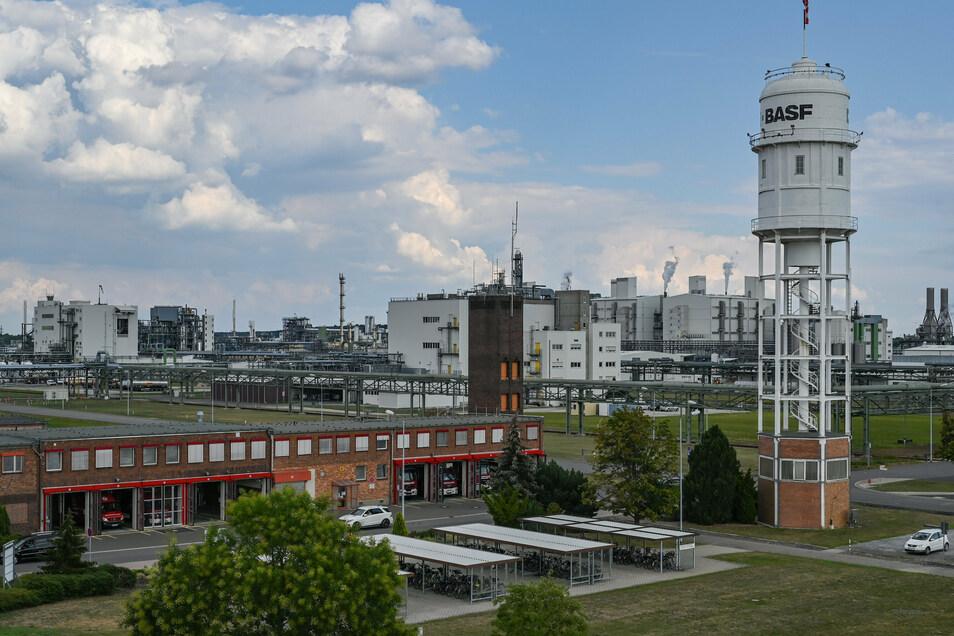 Auf dem Gelände der BASF in Südbrandenburg wird derzeit eine Anlage zur Produktion von Kathodenmaterial für Elektroauto-Batterie gebaut.