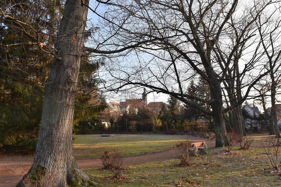 Der Clemens-Holzschuh-Park in Dipps ist auch ein beliebter Treffpunkt für fröhliche Runden. Hier will die Stadt ein Alkoholverbot einführen.