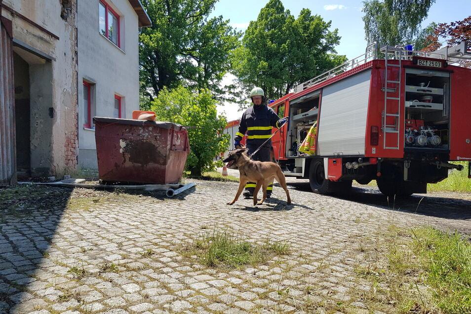 Gemeinsam mit Brandmittelspürhund Zora untersuchte Polizeihauptmeister Jens Mager am Mittag die Brandstelle auf mögliche Spuren.