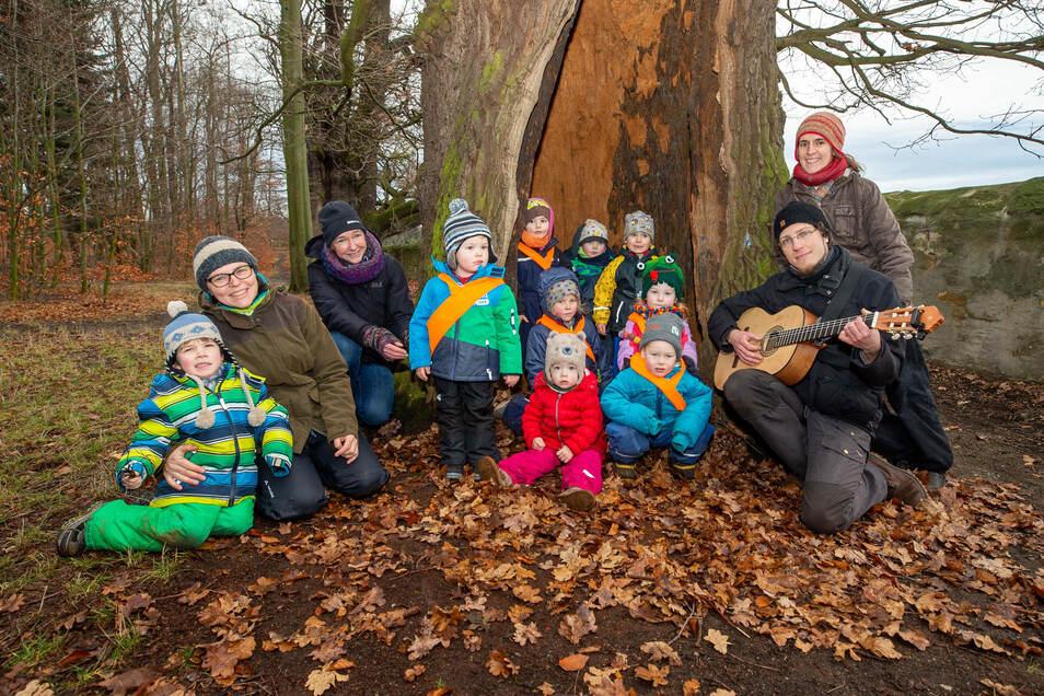 Die Waldkinder toben im Graupaer Schlosspark. Mit dabei sind ihre Betreuer Steffi Weiß, Kerstin Fritzsche, Steffi Kunze  und Jörg Hesse (v. li.).