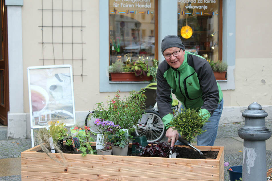 Olaf Haase von den Bautzener Stadtbegrünern  bepflanzte am Freitagvormittag ein Hochbeet vor dem Eine-Welt-Laden am Fleischmarkt.