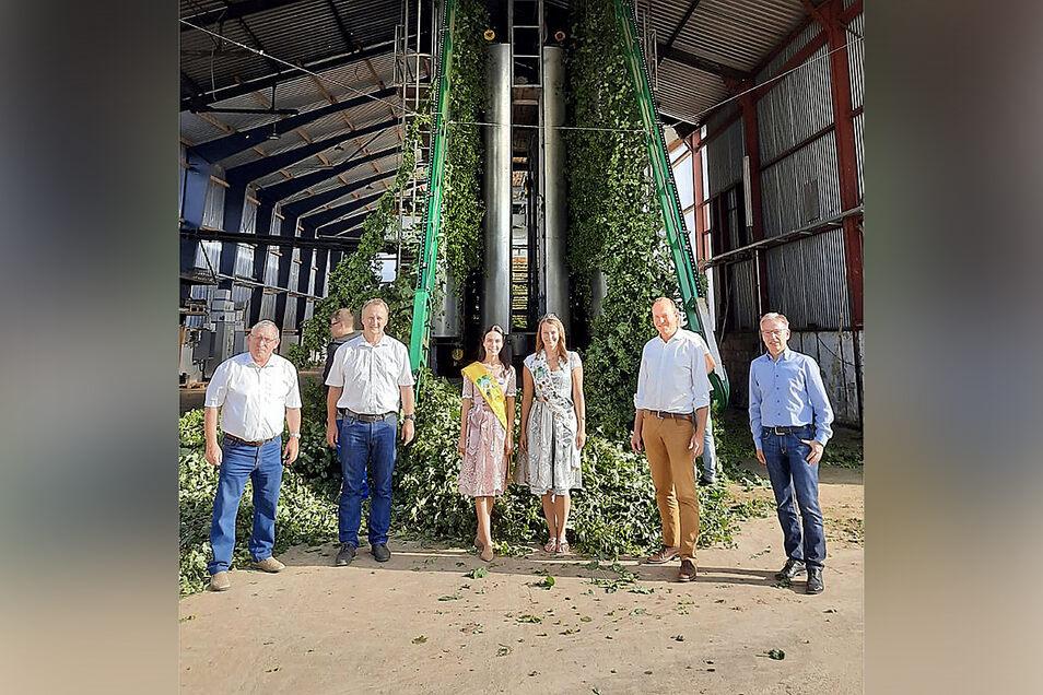 Landwirtschaftsminister Wolfram Günther (Bündnis 90/Die Grünen, 2. von rechts) eröffnet in Schrebitz die Hopfenernte für Sachsen eröffnet.